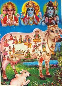 Kámadhénu népszerű nyomaton. O. P. Joshi: Gods of Heaven, Home of Gods, Print 9.